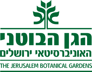 logo-300x234